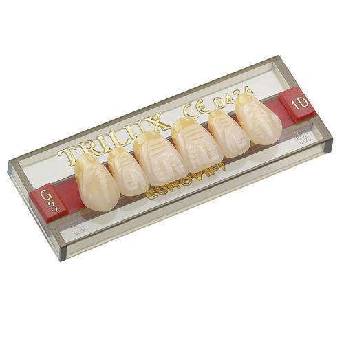 Dente Trilux Anterior Superior - VIPI